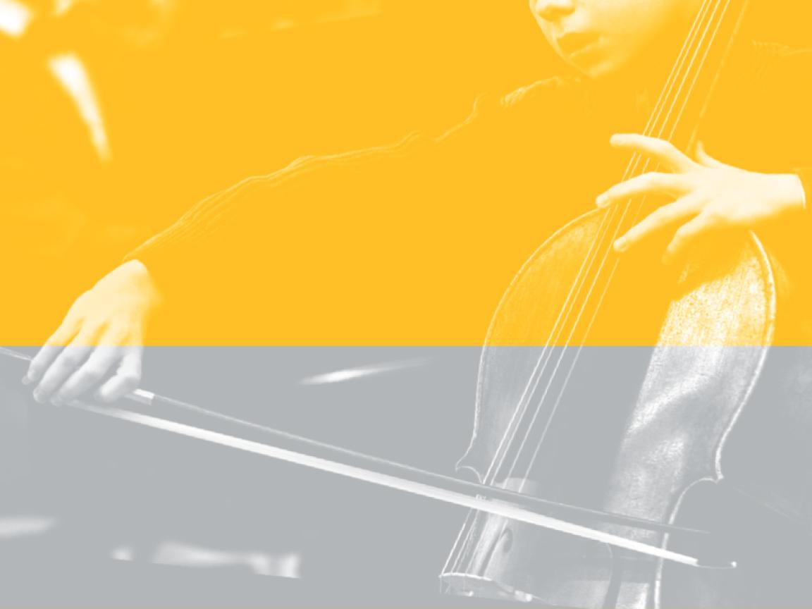 Exzellenzzirkel des Verbandes der Musik- und Kunstschulen Brandenburg